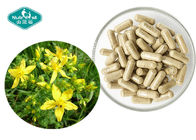 Vegetarian Herbal Food Supplement Healthy Promotes Positive Mood Balance
